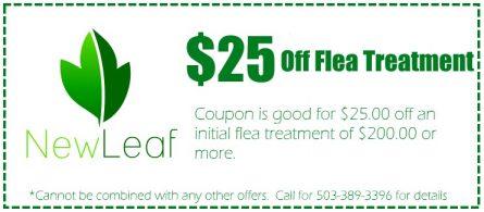 Portland Flea Treatment Coupon