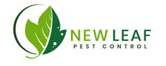 Pest Control in Vancouver WA from New Leaf Pest Control